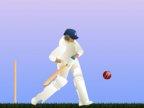 Jeu de cricket online