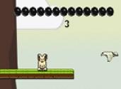 jeux de saut de lapin
