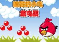 Angry Bird et les oeufs