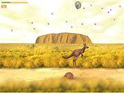 le kangourou et le koala