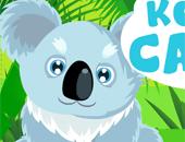 prendre soin des koalas